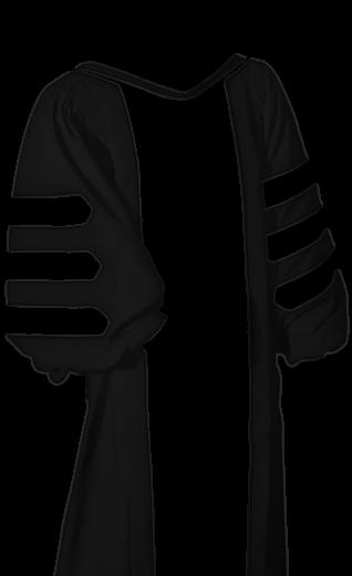 Custom Doctoral Gown Designer